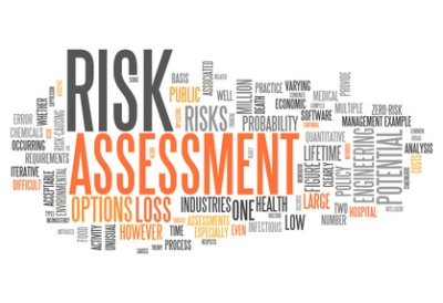 "Word Cloud ""Risk Assessment"""